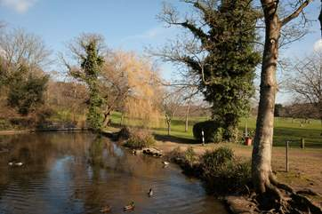 Take a walk down to the local duck pond where you can feed the ducks and have a stroll around the large park
