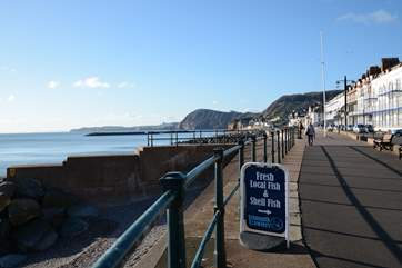 The grand sea front at nearby Regency Sidmouth, a delightful town to explore.