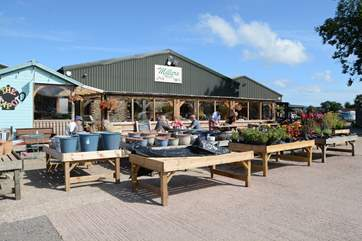 Miller's farm shop, an Aladdin's cave for food lovers, crammed with local produce and treats from France!