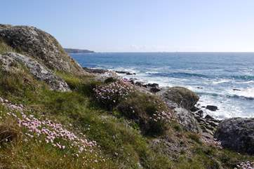 Plenty of coastal walks in the area.