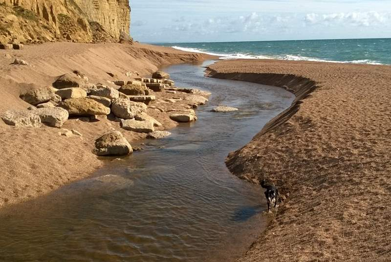 The famous Jurassic Coast is a short drive away, starting at Budleigh Salterton and stretching right across East Devon and into Dorset.