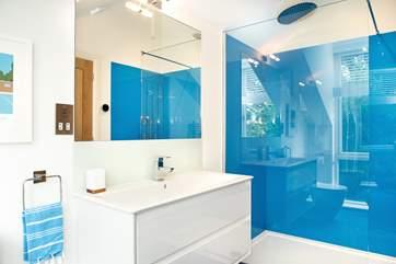 Bedroom 5's swanky shower-room - it even has a WiFi shower!
