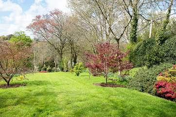 The lower garden in the spring.