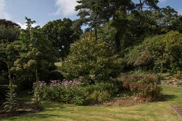Your four-legged friends will be delighted at the thought of exploring these beautiful gardens.