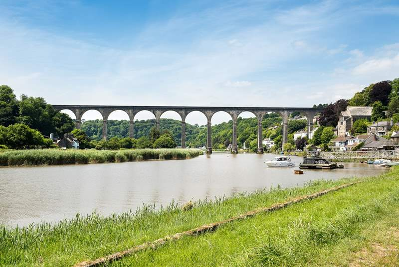 Hire a canoe or kayak and discover all the delights along the River Tamar.