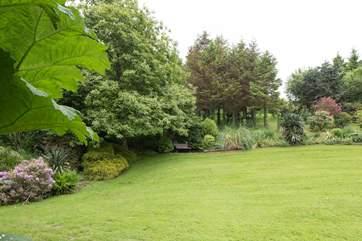 Lovingingly kept lawns.