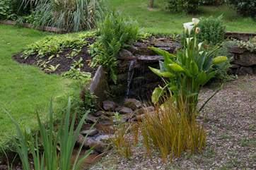 What a well kept garden!