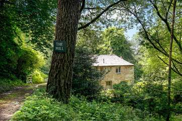The woodland setting provides a great deal of privacy