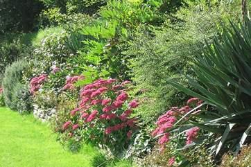 Garden borders in September are beautiful.