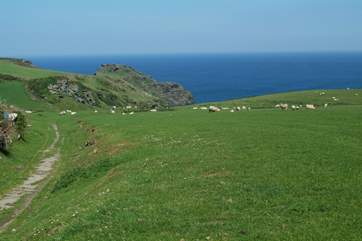 Bossiney and the coastal path are just around the corner from Bossiney View.