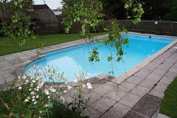 Another view of the lovely pool - from the top of the steps from the cottage.